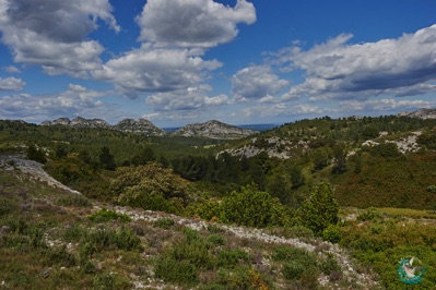 The Alpilles in provence