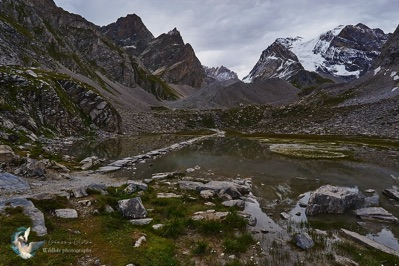 The Alps - the cow lake - Vanoise